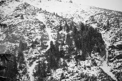 Bergen - Zakopane in de winter Stock Fotografie