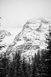 Bergen - Zakopane in de winter Royalty-vrije Stock Foto