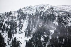 Bergen - Zakopane in de winter Stock Foto's