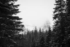 Bergen - Zakopane in de winter Royalty-vrije Stock Fotografie