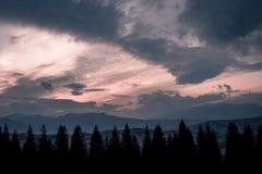 Bergen, zonsondergang en silhouetten van bomen Stock Foto's