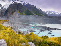 Bergengletsjers, Nieuw Zeeland Stock Fotografie