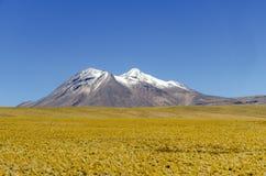 Bergenijs in Atacama Stock Foto's