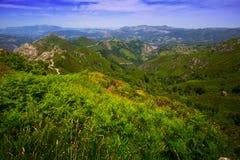 Bergenlandschap in de zomer Picos DE Europa Royalty-vrije Stock Afbeelding