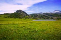 Bergenlandschap met meer en weiland Royalty-vrije Stock Foto
