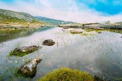 Bergenmeer met Cottongrass, katoen-Gras of Cottonsedge Eriophorum op Voorgrond Royalty-vrije Stock Foto