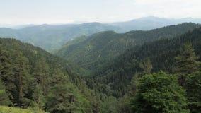 Bergenmening in het nationale park van Borjomi Kharagauli - Georgië stock videobeelden