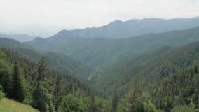 Bergenmening in het nationale park van Borjomi Kharagauli - Georgië stock footage