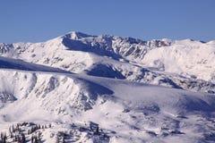 Bergenpieken in sneeuw 02 worden behandeld die Stock Foto's