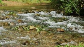 Bergenrivier met een rotsachtige bodem stock video