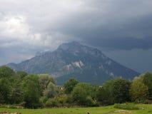 berger Стоковое Изображение