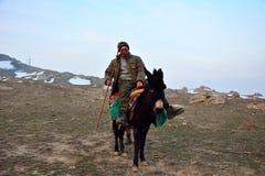 Berger azerbaïdjanais sur la mule photo libre de droits