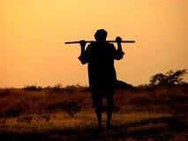 Berger de coucher du soleil Images libres de droits