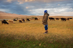 Bergers de femme des moutons et des chèvres Photographie stock