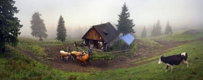 Bergers et moutons Carpathiens Photo libre de droits