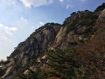 Berget förbiser staden Arkivbild