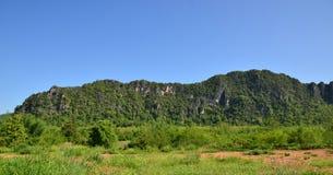 Berget hälsar skogen Arkivbilder