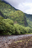 Berget i en dimma och en flod polynesia tahiti royaltyfri foto
