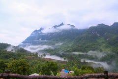 Berget i natur och skog och att känna sig bra kopplar av in dagen eller ferie i berget, Forested berglutning i lågt liggande moln Arkivfoto