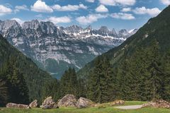 Berget når en höjdpunkt med den gröna skogen och vaggar i schweiziska fjällängar arkivbilder