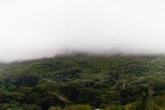 Berget och morgonen fördunklar i Seychellerna, den Victoria staden, den Mahe ön royaltyfri bild
