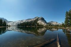 Berget och sörjer träd som reflekterar på den alpina sjön Arkivbilder
