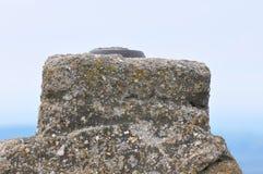 Berget vaggar detaljen med rostigt metalliskt objekt royaltyfria foton