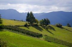 Bergfält Fotografering för Bildbyråer