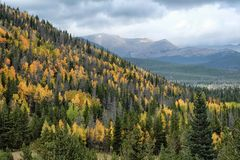 Bergfärger Arkivfoto