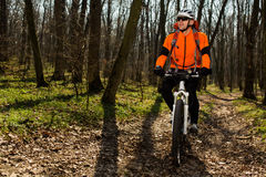 Bergfietser die op fiets in meest springforest landschap berijden Stock Foto's