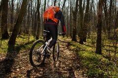 Bergfietser die op fiets in meest springforest landschap berijden Stock Afbeeldingen