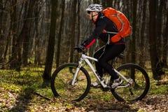 Bergfietser die op fiets in meest springforest landschap berijden Royalty-vrije Stock Afbeeldingen