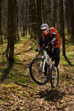 Bergfietser die op fiets in meest springforest landschap berijden Stock Afbeelding