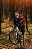 Bergfietser die op fiets in meest springforest landschap berijden Stock Foto