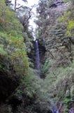 Bergflod royaltyfri foto