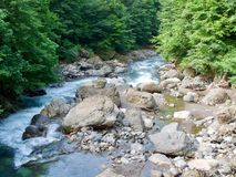 Bergflod, Abchazien, Kaukasus Arkivbilder