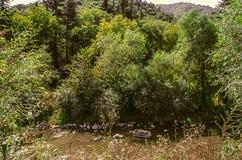 Bergflod Derbent med lerigt vatten av Armenien Royaltyfria Bilder