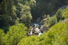 Bergflod Gega i Abchazien, Kaukasus Royaltyfri Fotografi