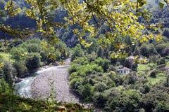 Bergflod i Abchazien Arkivfoton