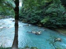 Bergflod i Abchazien Royaltyfri Bild