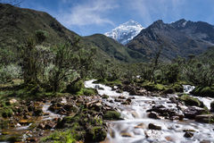 Bergflod i Anderna Arkivbilder