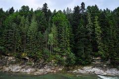 Bergflod i bakgrunden av en klippa med en skog arkivbild