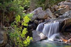 Bergflod i bergen av Mulanje Arkivbilder