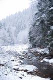 Bergflod i bergvinterskogen med snö-täckt träd och snöfall arkivbilder