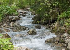 Bergflod i de Carpathian bergen arkivbilder