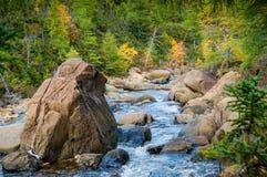 Bergflod i Gaspesie Fotografering för Bildbyråer