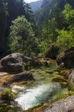 Bergflod i klyftan Royaltyfria Bilder
