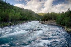 Bergflod i Norge sommartur Royaltyfria Bilder