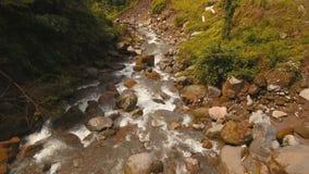 Bergflod i rainforestCamiguinöFilippinerna stock video
