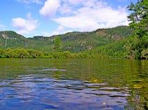 Bergflod i skogen Arkivfoto